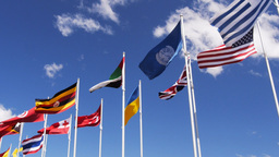 World Flags stock footage