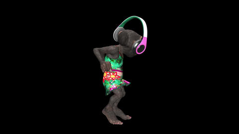 Monkey Dancing in Headphones - Female Chimp - I - VJ Loop... Stock Video Footage