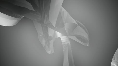 soft glossy white Animation