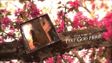 Tree of Memories After Effects Template