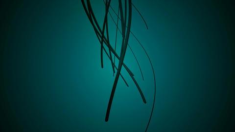 vine tick root Animation