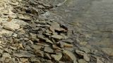 Waves On Rocky Shore stock footage