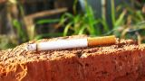 Smoking Cigarette Dolly Shot Time Lapse Fly Around stock footage