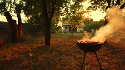 Wide Angle Shot of Barbecue (BBQ) Grill with Pork, Beef, Poultry and Chicken Mea Footage