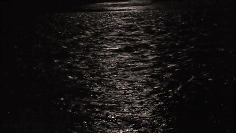 Moonlight night 2 Footage