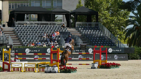 Jockeys in an International Competition Footage