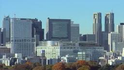 新宿副都心のビル群を展望する Footage