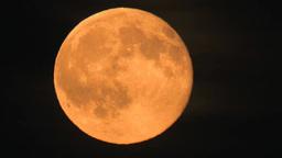 真っ黒な空に輝く赤い満月 Footage