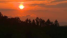 林の向こうに沈み行く夕日 Footage