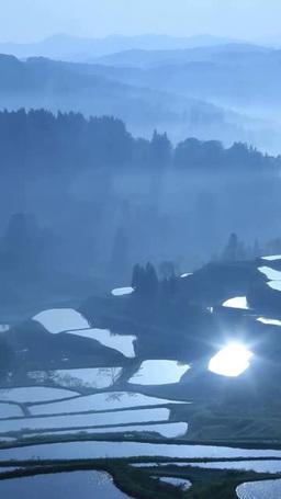 星峠の棚田に反射する太陽の光芒と朝霧 ภาพวิดีโอ