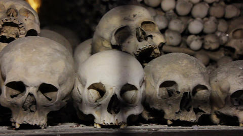 Human Skulls And Bones Handheld Shot stock footage