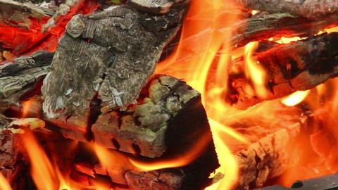 Bonfire 1 Stock Video Footage