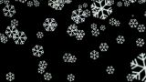 falling snowflake and particle at night,chrismas holiday Animation