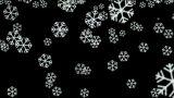 falling snowflake and particle at night,chrismas holiday Animation