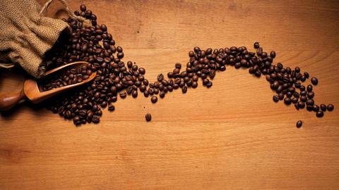 Coffee Bean Tick Symbol Stock Video Footage