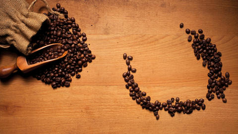 Coffee Bean Tick Symbol Footage