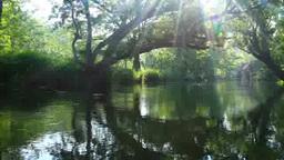 万水川と水車小屋と朝の木もれ日の光芒 Footage
