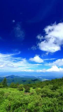 樹林と四阿山などの山並みと流れる雲 ภาพวิดีโอ
