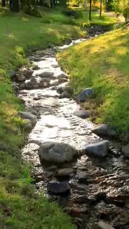 小川のせせらぎと木もれ日の光芒 ภาพวิดีโอ