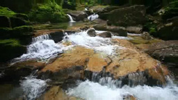Greenery and Arakawa tributary Footage