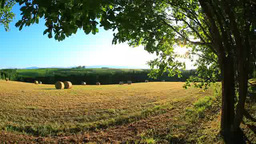 The setting sun filtered through the trees and hay rolls Footage
