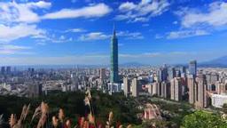 象山から望む台北101などのビル群とススキ 影片素材
