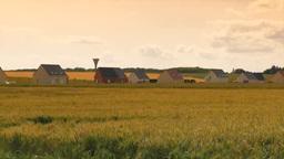 パリ郊外の麦畑と民家 Footage