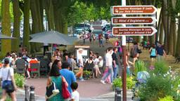 ベルサイユの街の観光客 Footage