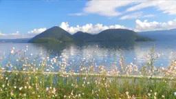 洞爺湖とお花畑 Footage