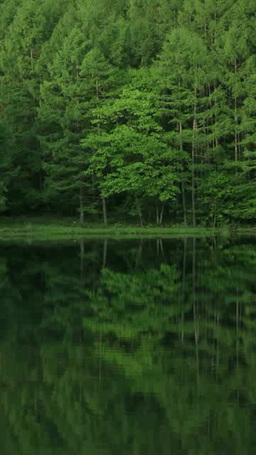 御射鹿池湖畔 影片素材
