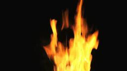 燃える炎 Live Action