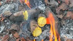 落ち葉焚きの焼き芋 Footage