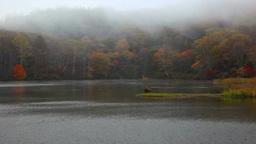 秋の鏡池と霧 Footage