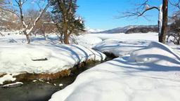 冬の姫川源流自然探勝園と北アルプス Footage
