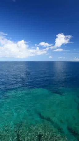 リーフと海と積乱雲 Footage