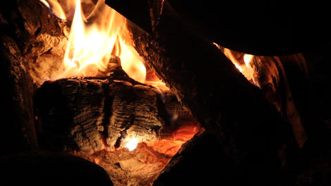 night campfire Stock Video Footage