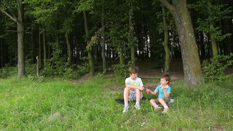Boys in forest 2 Stock Video Footage