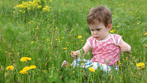 Baby with dandelions on green spring lawn Stock Video Footage