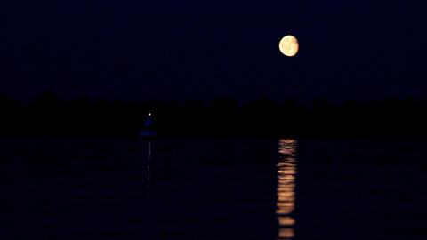 night moon and moonbeam in river Stock Video Footage