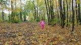 baby girl walking in autumn park Footage