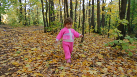 baby girl walking in autumn park Stock Video Footage
