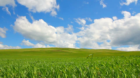 green hill with grass under cloudy sky Stock Video Footage