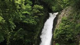 Joren waterfall Footage