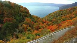 Fall foliage and Lake Towada Footage