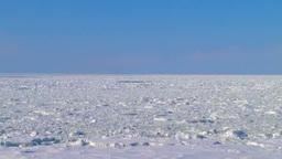 Drift ice Footage