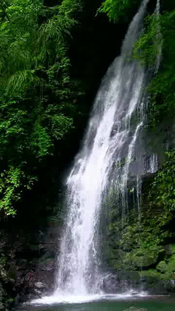 Biwa Waterfall 影片素材