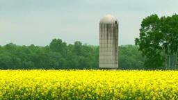 菜種畑とサイロ Footage
