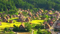 Shirakawa-go village Footage