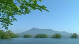新緑の大沼公園と駒ヶ岳 Footage