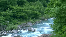 Dakigaeri Valley of the fresh green Footage